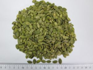 Snow White Pumpkin Seeds Kernels AA pictures & photos