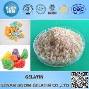 Adhesive Gelatin pictures & photos