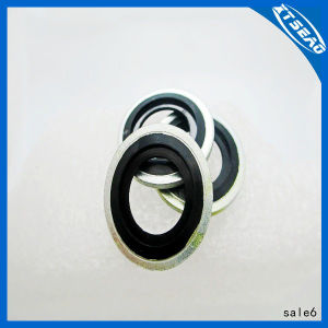 Metric Dowty Bonded Seal/Washer Self Centering pictures & photos