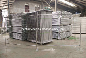 New Zealand Temporary Fence Panel pictures & photos