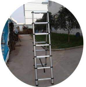 Double Telescopic Ladder,Magic Telescopic Ladder (AL-019-2020)
