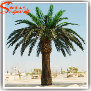 Competitive Price Home Decoration Artificial Plant Date Palm Tree pictures & photos