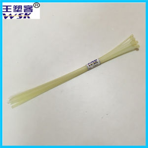 Free Sample Self-Locking Nylon66 Plastic Cable Tie