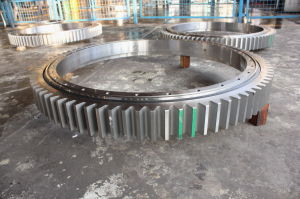 Water Treatment Slewing Ring/Swing/Slewing Bearing with Outer Gear Hardness 285-321bhn with SGS pictures & photos