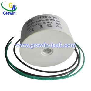 Potted Pond LED Lighting Transformer, Power Supply Toroidal Transformer pictures & photos
