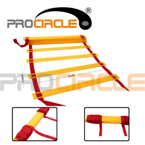 Gym Equipment Quick Flat Rung Agility Ladder with Carry Bag (PC-AQ2012-2014) pictures & photos