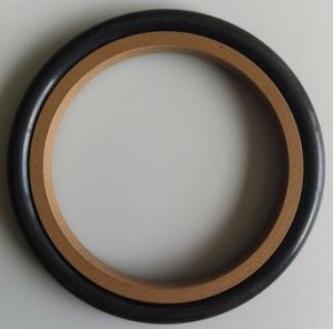 Hydraulic Seals/Oil Sealing/Rubber Seal pictures & photos