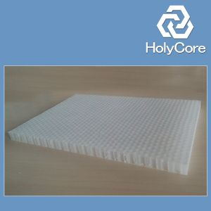 PP Honeycomb Core for Gluing