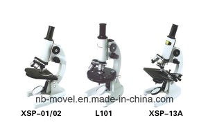 Biological Microscope, Student Microscope, Stereo Microscope pictures & photos