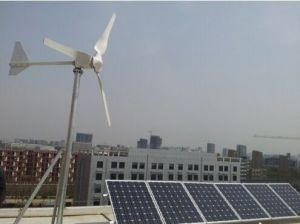 Solar Wind Hybrid System for Home Use 300W-100kw pictures & photos
