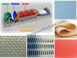 Mesh Fabrics for Paper Mills pictures & photos