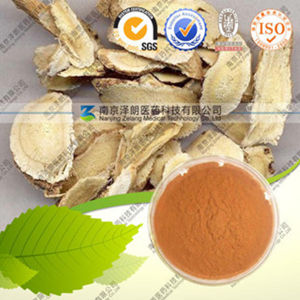 High Quality Natural Astragalus Extract Astragalus Polysacharin pictures & photos