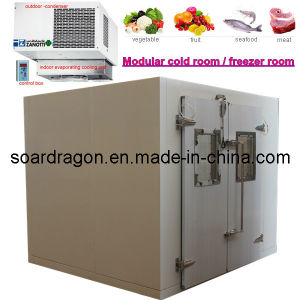 Modular Cold Room and Freezer Room with Drop-in Compressor pictures & photos