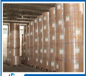 Hot Sale Wood Pulp 125g Kaolinite Coated White Top Testliner Paper Board pictures & photos