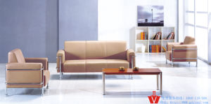 Fashion Unique Design Stainless Steel Frame Office Sofa (WP5-3005)