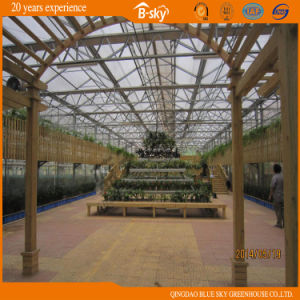 Dutch Technology High Quality Multi-Span Glass Greenhouse pictures & photos