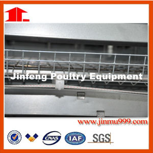 H Frame Layer Broiler Battery Chicken Cage System Made in China with Good Quality pictures & photos