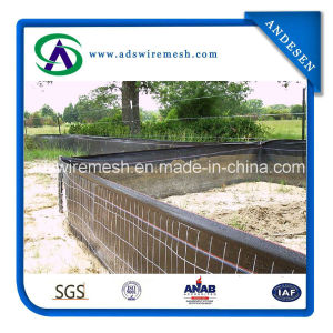 Factory Direct Sell Wire Backed Silt Fence pictures & photos