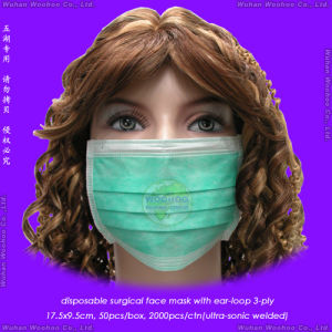 Disposable PP Non-Woven Face Mask pictures & photos