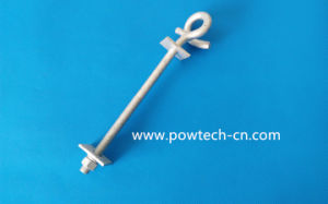 Oval Eye Bolt (Twin eyes) pictures & photos