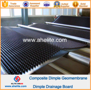 HDPE Dimple Geomembrane for Roof Garden pictures & photos