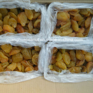 Hot Sale Dried Fruits From China pictures & photos