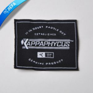 Custom Woven Clothing Labels and Garment Accessories pictures & photos