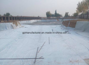 Hot Sell Best Selling Non Woven Geotextile /Geofabirc pictures & photos