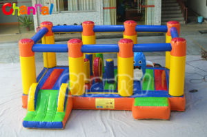 Inflatable Jumping Castle/Inflatable Jumper Combo Chb334 pictures & photos