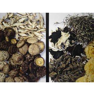 Died Shiitake Mushroom (ZP002)