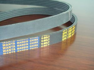 Ribbed Belt (6PK1665) for Auto