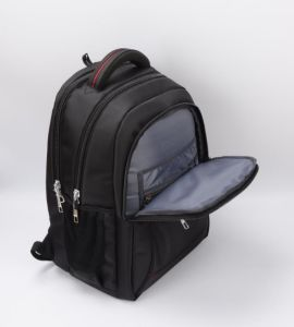 """High Quality Laptop School Backpack Bag for 15.6"""" pictures & photos"""