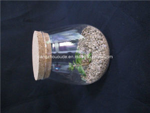 Glass Vase with Cover pictures & photos