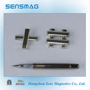 Strong Abnormity Permanent Neodymium NdFeB Magnets pictures & photos