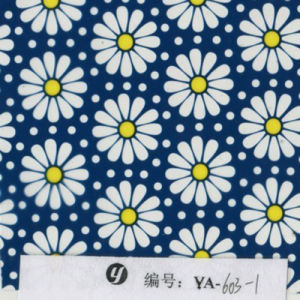 Yingcai Flower Designs Hydro DIP Transfer Printing Film pictures & photos