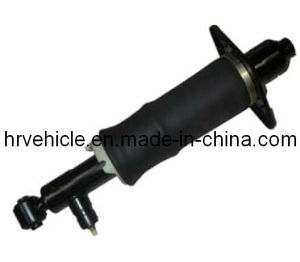 Rear Air Susension Shock Absorber for Audi A6 Allroad pictures & photos