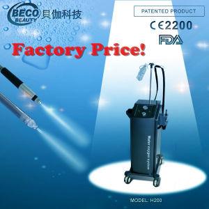 Water Oxygen Beauty Equipment /Salon Equipment (H200) pictures & photos