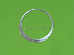 AISI 316 1x19-0.4mm Stainless Steel Wire Strand pictures & photos