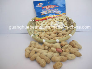 Roasted Peanut in Shell pictures & photos