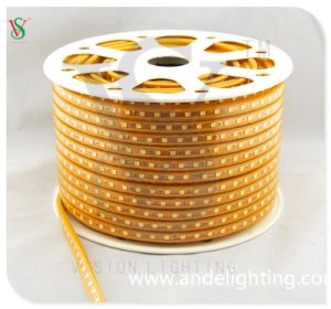 220V LED Strip Light SMD Rope Light pictures & photos