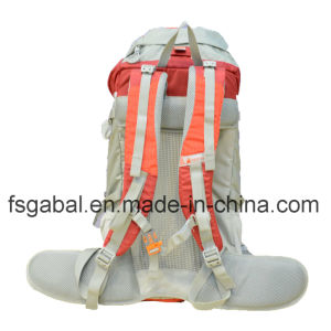 80L Travel Backpack Hiking/Camping Rucksack Luggage Bag pictures & photos