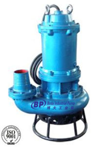 Vertical Submersible Slurry Pump (QZJ) pictures & photos