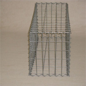 Galvanized Welded Gabion Box Mesh pictures & photos