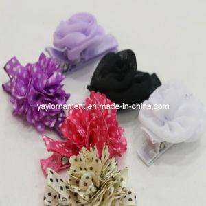 Hair Clip & Hair Accessories