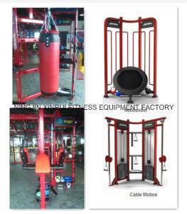 Synrgy 360 / Crossfit Rig / Multi Gym Equipment / Life Fitness Remanufactured pictures & photos