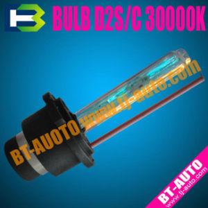 Auto HID Bulb D2S/C