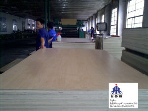 Okume Plywood pictures & photos