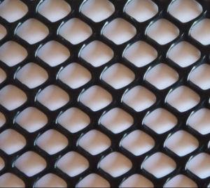 Colored PP/PE/HDPE Plain Weave Plastic Wire Mesh pictures & photos