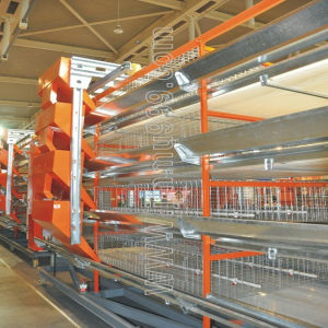 Poultry Feed Manufacturers H Type Layer Chicken Cage Farm Equipment pictures & photos