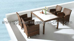 Rattan Furniture (C442)